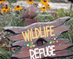 Dove On Wildlife Sign With Black Eye Susan Flowers